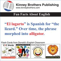 Words that came into the English language via Spanish.
