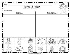 Kindergarten Living And Non Living Worksheets