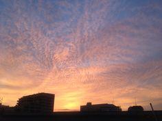Dawn in Tokio