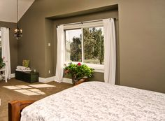 The ProVia Endure vinyl window's energy-efficient construction and high-tech glass keep you warm in the winter and cool in the summer. Energy Efficient Windows, Energy Efficiency, Warm In The Winter, Custom Windows, Amish Country, Window Styles, Historic Homes, Windows And Doors, Home Goods