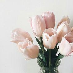 Flower by Trang Lê | We Heart It