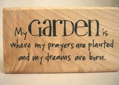 My garden is where my prayers are planted ans my dreams are born
