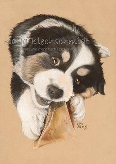 Hundeportrait - A4 https://www.facebook.com/Portraits.und.mehr.nach.Fotovorlage