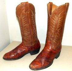 Brown Leather  and Eel Nocona brand cowboy boots