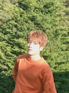 Jinjin Kim Myungjun, Park Jin Woo, Jinjin Astro, Astro Fandom Name, Sanha, Minhyuk, Kpop Boy, Cute Boys
