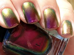 ILNP — Cameo (Summer Collection | Summer 2015)