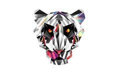 Tiger Illustration by Justin Maller #illustrations #art
