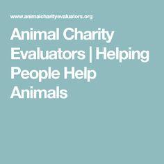 Animal Charity Evaluators   Helping People Help Animals