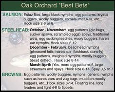 Fontana lake boat ramps and map fly fishing destinations for Oak orchard fishing report