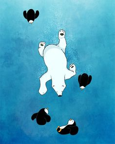penguins and polar bears