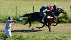 Perdía una apuesta, cortó una carrera de caballos y lo mataron.  Ocurrió durante una carrera clandestina en un pueblo tucumano. Según la autopsia, el hombre murió por los golpes.  https://www.facebook.com/forohorses