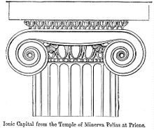IonicCapitalPriene - Ionic order - Wikipedia, the free encyclopedia Colour Architecture, Architecture Concept Drawings, Architecture Sketchbook, Gothic Architecture, Ancient Greek Art, Ancient Greece, Greek Drawing, Ionic Order, Roman Columns
