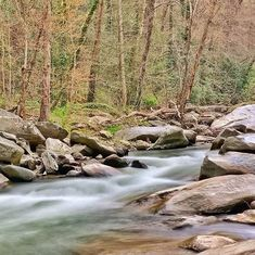 When meeting obstacles in life treat it like a river.  Cut a new path.  #landscape #outdoors #troutstream #spring #april #water #explorer #adventuretime #adventures #wanderlust #traveling #travelgram #travelingram #mytravelgram #instatraveling #traveler #igtravel #tourism #trip #travelphoto #landscapephotography #instagood #america #bestoftheday #iphoneography #photooftheday #river #landscapephotography #northcarolina #waterfall #instagood Eric Jones, Photos For Sale, Trout, Prints For Sale, Adventure Time, Travel Photos, Landscape Photography, Paths, Tourism