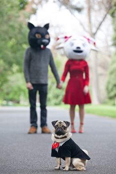 pet-friendly engagement session, humans wearing animal masks and Pug, ©Pupparazzi Pet Photography, Melbourne, Victoria
