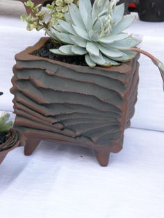 by Ant Ware, let's make some wiggle wire pots! Hand Built Pottery, Slab Pottery, Pottery Vase, Ceramic Pottery, Ceramic Boxes, Ceramic Clay, Mini Vasos, Keramik Design, Pottery Handbuilding