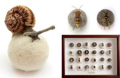 Embroidered 3D Insects and Snails by Claire Moynihan. See these close up at the link:  http://www.thisiscolossal.com/2013/06/embroidered-3d-insects-and-snails-by-claire-moynihan