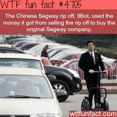 Epic Facts, Unusual Facts, Wtf Fun Facts, Funny Facts, Crazy Facts, Random Facts, Interesting Facts, Random Stuff, Weird History Facts