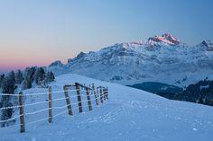 Abendruhe auf der Hochalp   www.tapeterie.de Mount Everest, Mountains, Nature, Travel, Pictures, Cowbell, Photo Wallpaper, Wallpapers, Nice Asses
