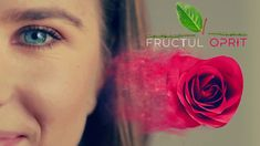 Making Off - Fructul Oprit Idol, Rose, Flowers, Plants, How To Make, Movies, Pink, Florals, Films