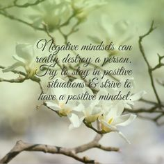 Negative mindsets can really destroy a person. Try to stay in positive situations & strive to have a positive mindset. Positive Mindset, Place Card Holders, Positivity, Thoughts, Canning, Quotes, Quotations, Home Canning, Quote