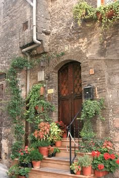 Showing the love of plants in Assisi, Italy