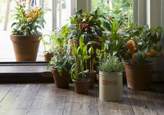 how to turn your home into a sanctuary