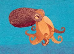 Octopus by Jonathan Woodward