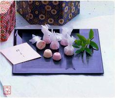 Okayama Kurashiki|岡山 倉敷|Wagashi|和菓子|Kikkodo|橘香堂 仲よし(和三盆糖御干菓子)