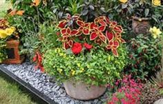 gardens accented by pathways & pots - Google Search