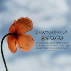 Quran [79:40-41]
