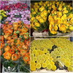 Es lunes y en Bruflor es día especial porque llegan flores del Holanda