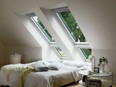 Fenster                                                                                                                                                                                 Mehr