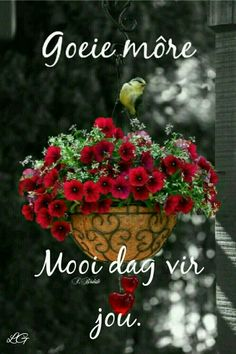 Good Morning Prayer, Morning Prayers, Good Morning Good Night, Good Morning Wishes, Day Wishes, Good Morning Quotes, Lekker Dag, Afrikaanse Quotes, Goeie More