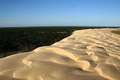 Pontal do Peba - Alagoas