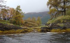 Arriving on Eilean Munde, the burial Isle of the MacDonalds of Glencoe by Ryan Littrell