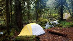Campsite Mt Hood National Forest #camping #hiking #outdoors #tent #outdoor #caravan #campsite #travel #fishing #survival #marmot http://bit.ly/2eeO3Ub