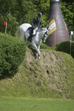Champion Du Lys 「Laeken x Karene Du Lys」 Selle Francais Stallion