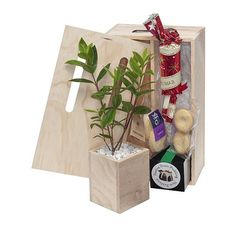 With a huge selection of creative promotional items, unique corporate gifts and branded corporate apparel we create promo solutions that deliver results. Fruit Mince Pies, Indoor Farming, Tree Seeds, Christmas Crackers, Lemon Lime, Christmas 2015, Camellia, Corporate Gifts, Shortbread