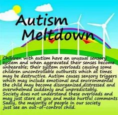 Memes That Nail What It     s Like to Be an      Autism Parent        To be     Autism meltdowns