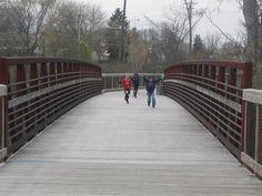 boardwalk metal railing - Google Search