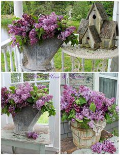 Purple porch décorating