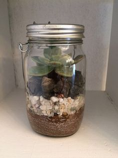 beautiful succulents for your wedding or function decor.  made by mlsgliving decor -  www.mlsg.co.za