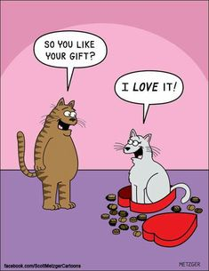 Happy Valentine's Day to all of our human and kitty friends! How true is this hilarious comic by Scott Metzger? I Love Cats, Crazy Cats, Cute Cats, Funny Cats, Funny Animals, Cat Valentine, Valentine Cartoon, Valentine Gifts, Cat Jokes