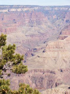 Grand Canyon AZ