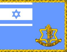 2014: Inconsistent Outrage: Responding to the Jewish Nation State Bill