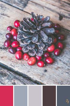 ZJ Colour Palette 154 #colourpalette #colourinspiration