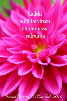 RunoTalon voimapuutarha: Kaikki mitä tarvitsen on minussa valmiina ♥ Affirmation Cards, Create Yourself, Life Is Good, Affirmations, Motivational Quotes, Poems, Wisdom, Messages, Thoughts