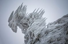 On Mount Javornik, part of a mountain range in eastern Slovenia, photographer Marko Korosek captured these beautiful images of ice that is formed by high winds and freezing fog - this looks like some sort of alien!
