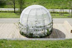Gallery of Inside the Flower Pavilion / LAVA - 10