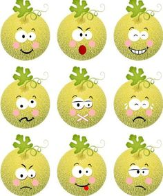 Cantaloupe melon with different expression icons